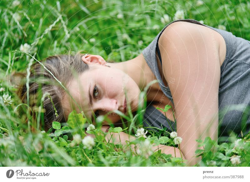 relaxation Human being Feminine Young woman Youth (Young adults) Woman Adults Head 1 18 - 30 years Environment Nature Grass Gray Green Lie Relaxation Clover