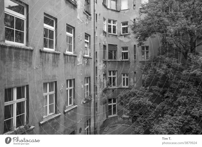 Backyard Prenzlauer Berg . Berlin Courtyard Black & white photo Deserted Town Downtown House (Residential Structure) Day Capital city Old town Exterior shot