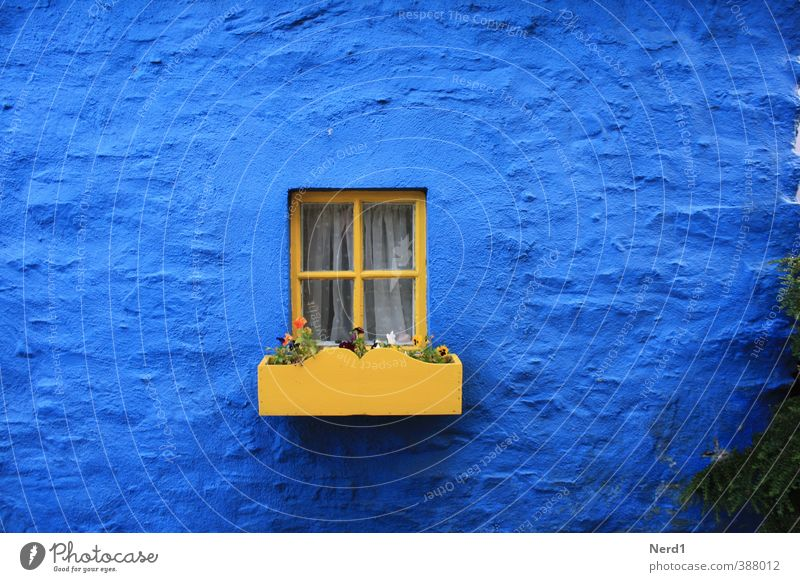 little window Village House (Residential Structure) Wall (barrier) Wall (building) Facade Window Stone Glass Historic Blue Yellow Flowerpot Colour photo