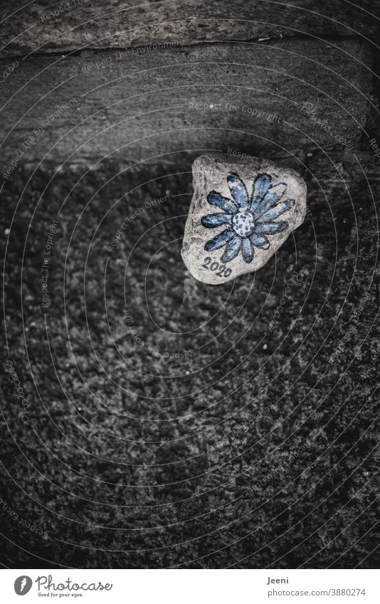 Stone in the street | painted with a blue flower | inscribed with the number 2020 Painted Art Memory Labeled writing Flower Blue Colour photo Multicoloured