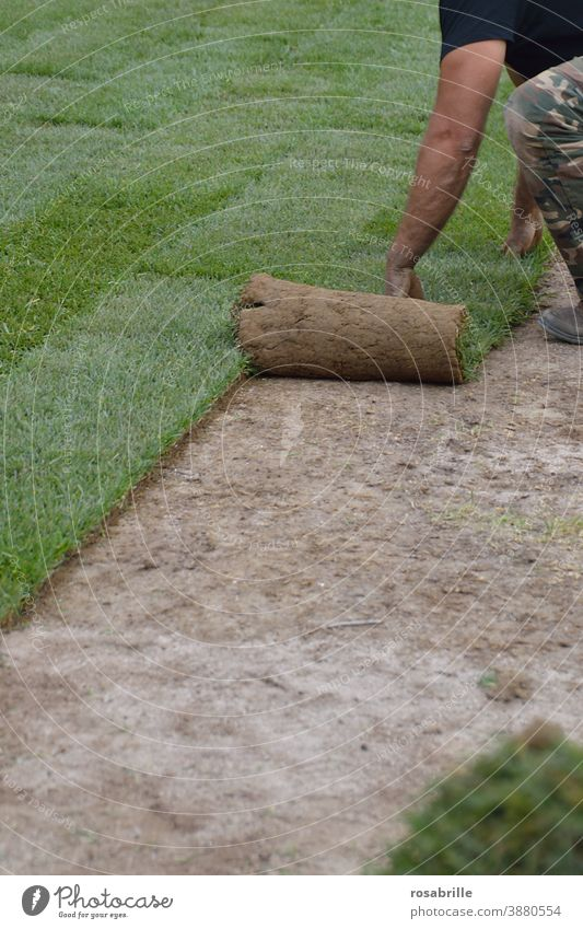 Laying sod | Trash 2020 roll Sheepish Green space work everyday working life labour Roll Roll out Lawn lawn Grass Real estate grow swift Man Gardener