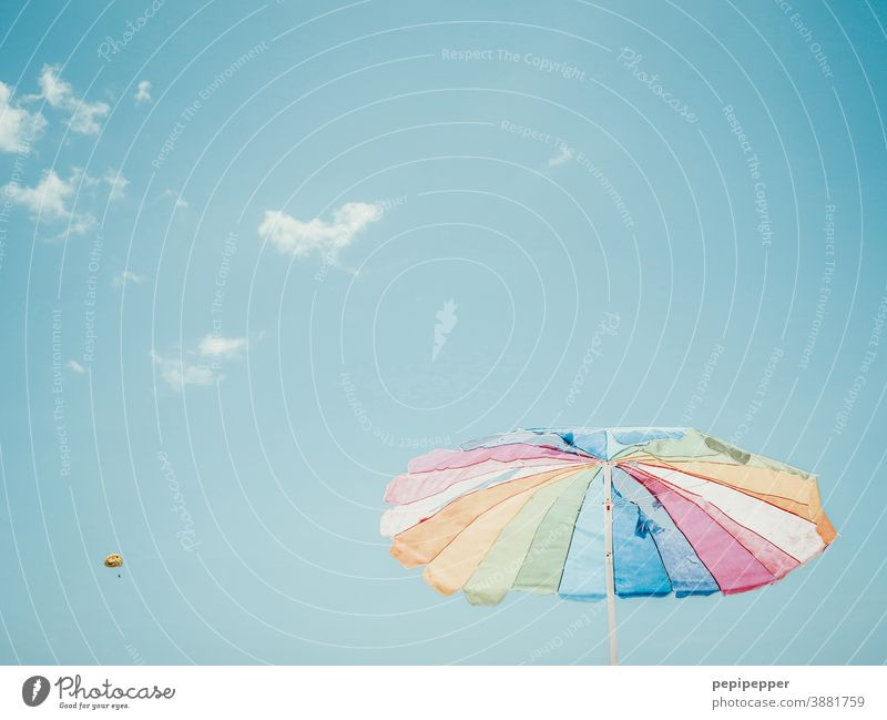 Parasol with paraglider in the background variegated Sunshade Paraglider Parachute Skydiver Blue Exterior shot Freedom Colour photo Joy Sports Flying