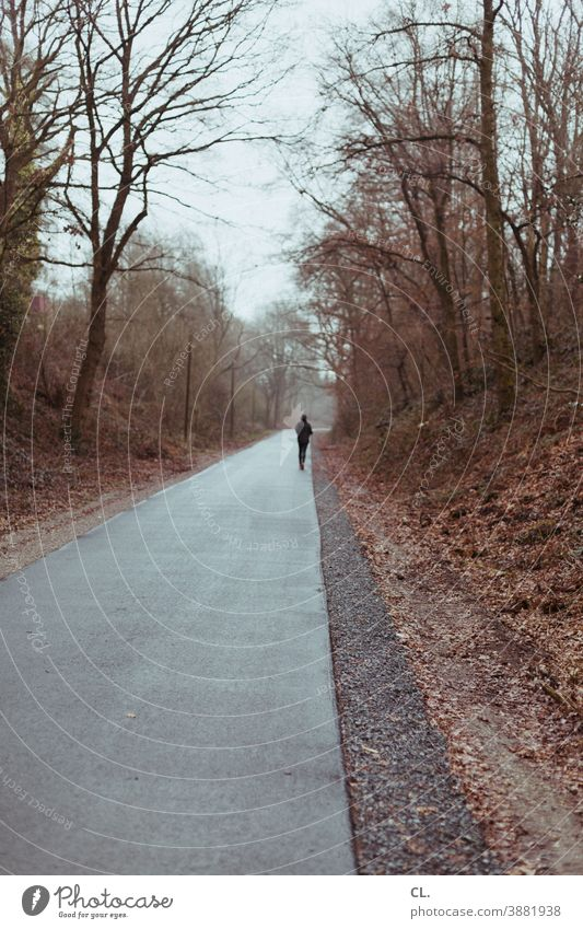 runners Walking Jogging Jogger Runner Sports Winter Lanes & trails Gloomy Target on one's own Loneliness Escape recreational sport Forest trees off Nature