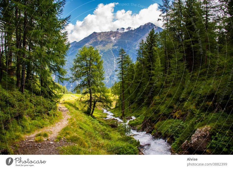 streams on the Alps of South Tyrol eight alps austria tirol scenics scene flowing fall climb courage dangerous summit sports trekking waterfall outdoor peak