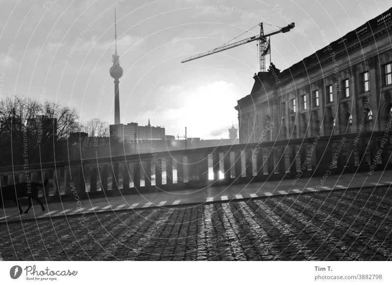 Winter in Berlin Mitte on the Spree . The morning sun casts shadows. river River Water Capital city Exterior shot Town Deserted Downtown Tourist Attraction