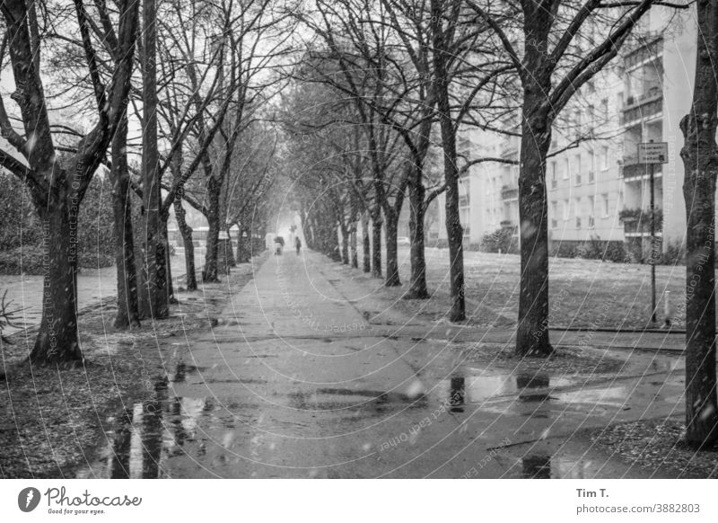 Winter in the Frankfurter Allee . A wet and cold sidewalk . Berlin Street Black & white photo Prefab construction Capital city Exterior shot Snow