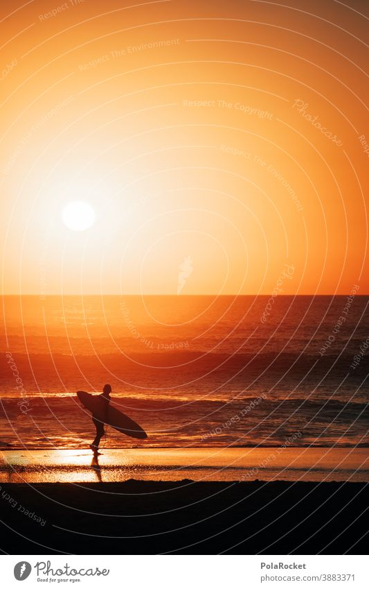 #A0# Surfer's paradise Romance Sunset coast Man Lifestyle Athletic Water Timeless To enjoy Energy spiritually Spirituality Snapshot tranquillity Idyll