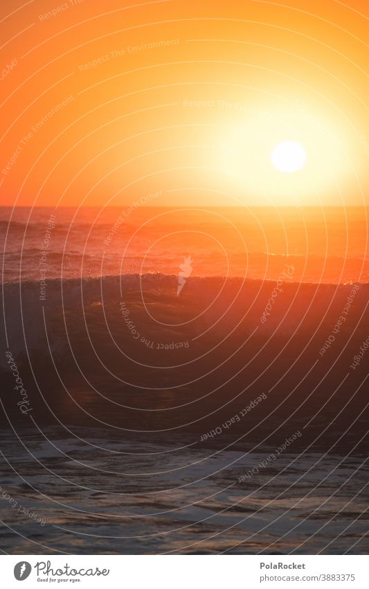 #A0# Wave at sunset Waves Swell Undulation Wavy line Wave action Wave break France Idyll Sea water Sunset
