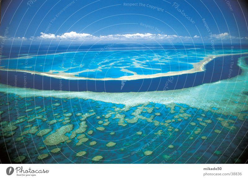 Water Green Blue Clouds Dream Australia Reef