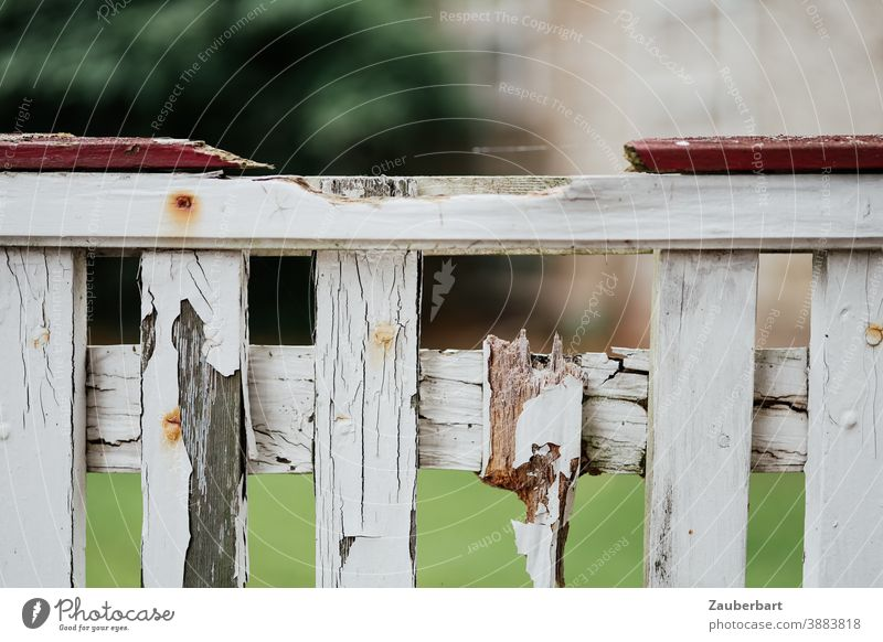 Old, white wooden fence with weathered varnish and broken slats Fence Wood Wooden fence White Varnish Weathered shattered Splinter romantic