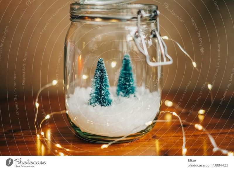 White Christmas - Two small Christmas trees on snow in a jar with lights Christmassy Christmas decoration fir trees Snow Preserving jar Snowglobe Fairy lights