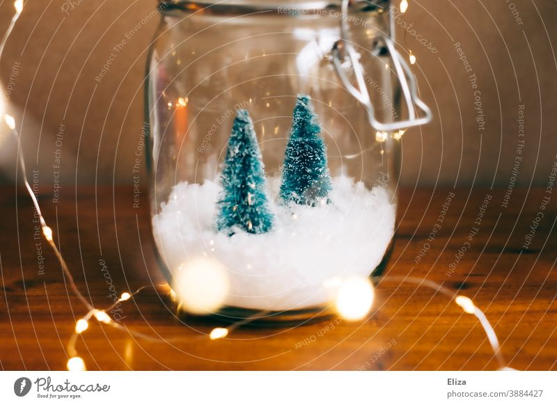 White Christmas in a jar - Two small Christmas trees on snow in a jar with lights around them fir trees Decoration Christmas decoration Glass Fairy lights