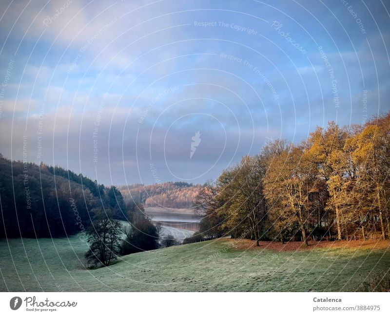Frost lies on the meadow, the dark spruces, the autumn forest. The sun rises and illuminates the landscape around the reservoir. Landscape Nature Winter