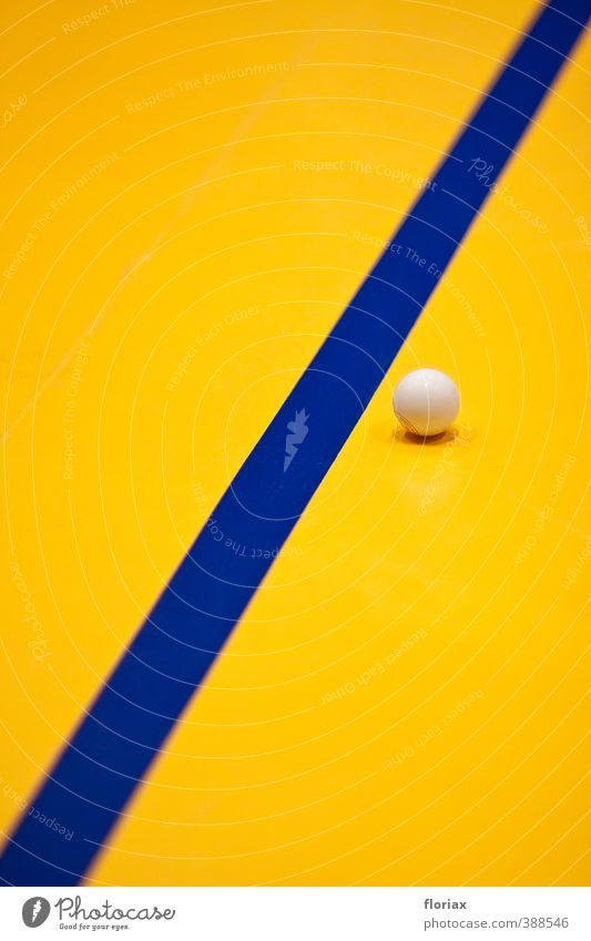 sports hall aesthetics Athletic Fitness Overweight Meditation Leisure and hobbies Playing Sports Sports Training Ball sports Table tennis ball Plastic Sphere