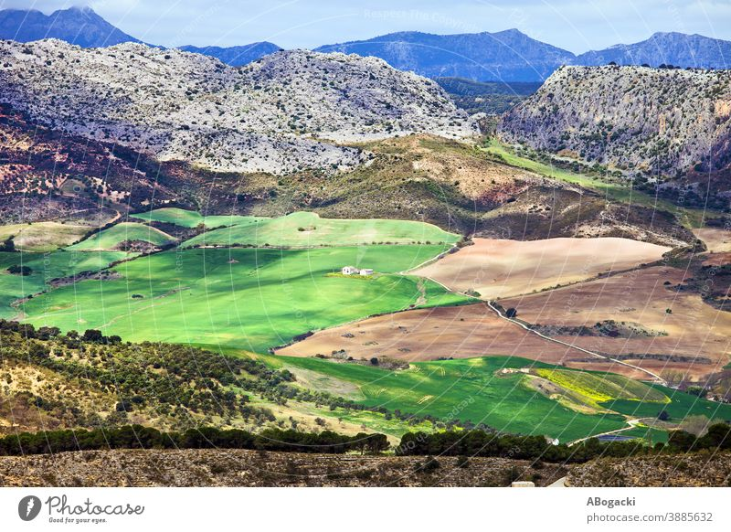 Andalusia Landscape In Spain agriculture andalucia andalucian andalusia andalusian beautiful country countryside cultivated environment europe farm farmland