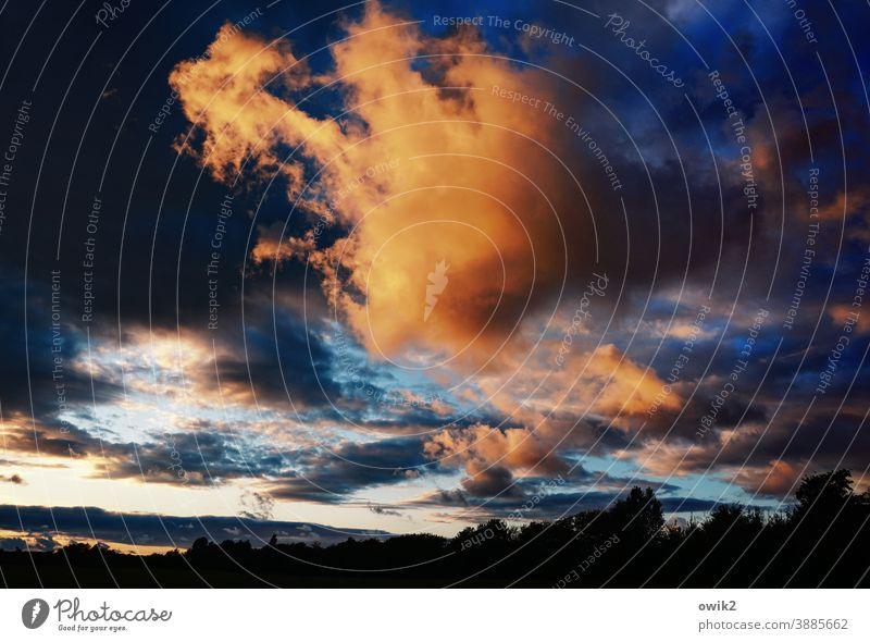 downfall Warm light Horizon Clouds Illuminate Sunset Evening Sky Exterior shot Deserted Panorama (View) Long shot Sunlight Light (Natural Phenomenon) Contrast