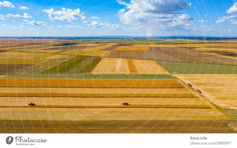 Above view on two combines, harvester machines, harvest ripe maize and blue sky with white clouds Aerial Agricultural Agriculture Cereal Clouds Cloudscape