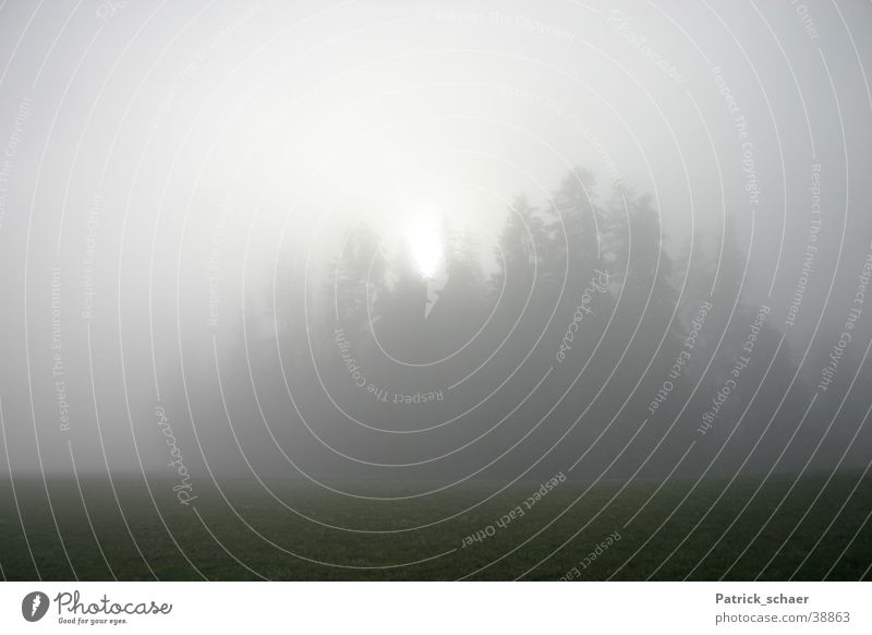 foggy sun Fog Forest Dark Mountain Sun Landscape Blur