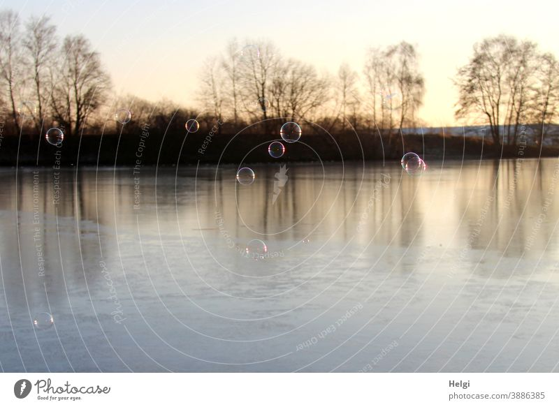 Soap bubbles over the frozen lake in the morning sun Winter soap bubbles Lake Frost Ice Frozen Light Shadow Back-light Landscape Nature Environment Morning