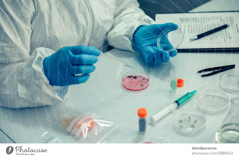 Scientist with a petri dish in the laboratory top view coronavirus scientist investigation drop dropper test covid-19 bacteriological protection suits bacteria