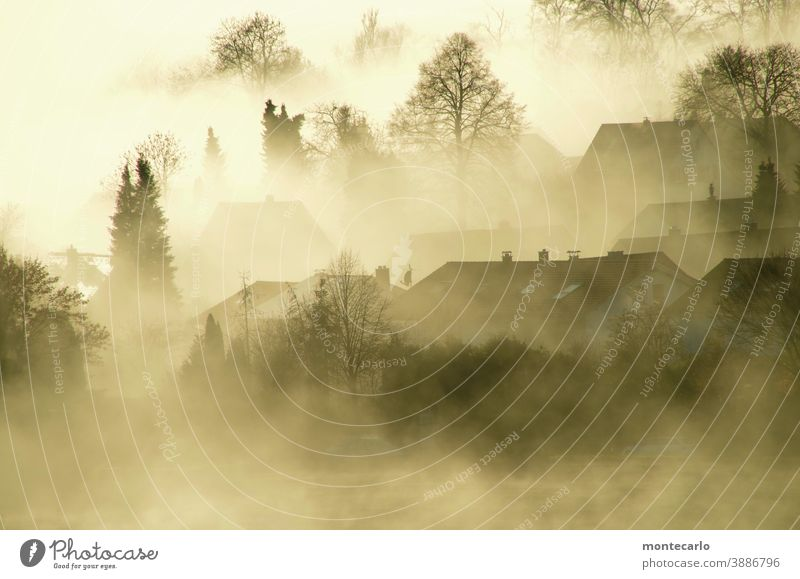 Fog lies over a village at sunrise Light Dawn Morning Exterior shot naturally Authentic Beautiful weather Sunlight Sunrise Autumn Eerie foggy Calm Deserted
