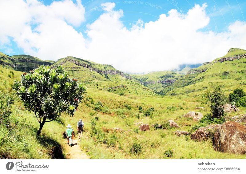 wanderlust Sunlight Contrast Light Day Exterior shot Wanderlust pretty Gorgeous South Africa Drakens Mountains Colour photo Son Hiking Green Blue Fantastic