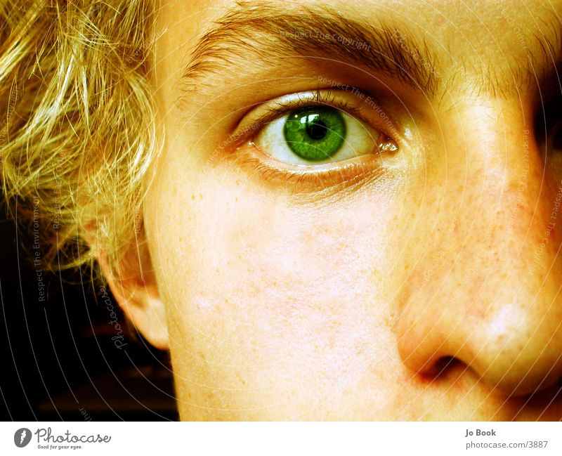 Man Green Face Eyes Hair and hairstyles Dream Blonde Nose Empty Part Cheek Half Eyebrow