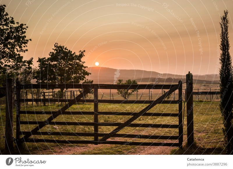 The sun rises behind the hill, still the gate to the pasture is closed Landscape Nature Sun Sunrise Morning Summer Twilight trees Hill Sky Horizon Fence Goal
