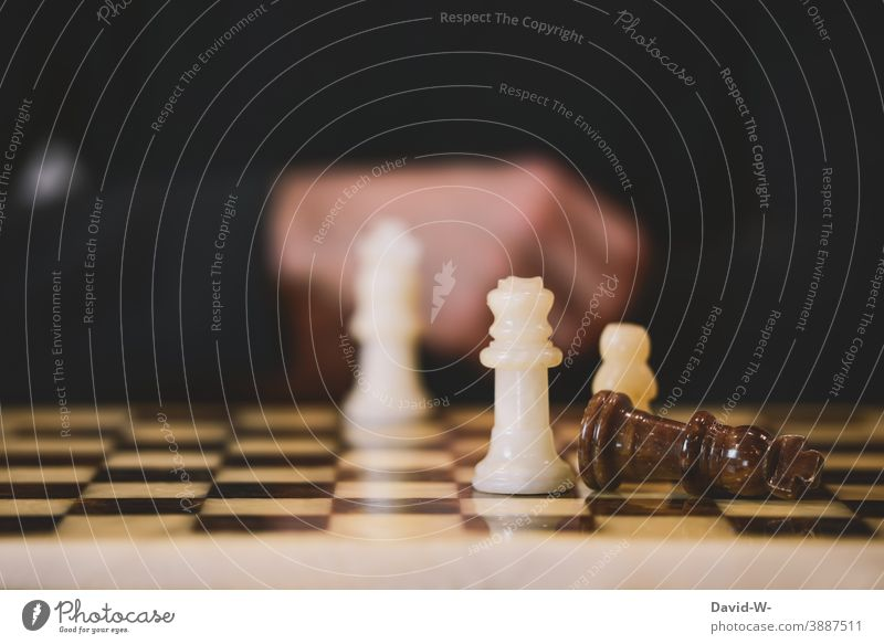 Chess - beat the opponent Success Thrashing triumphant King Fallen Success concept Chessboard successful