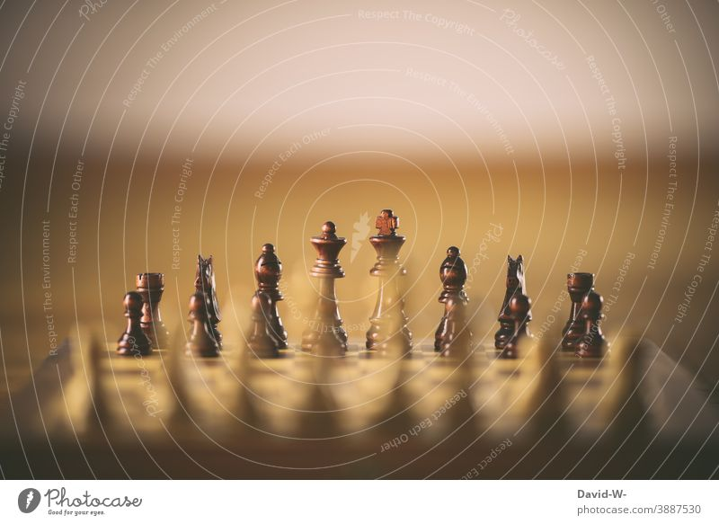 Chessboard - chessmen on a chessboard in a row Duel Success Dexterity Tactics Leisure and hobbies Think
