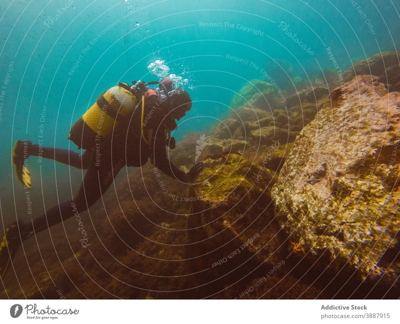 Diver swimming in deep ocean among aquatic vegetation underwater fish nature sea colorful background blue environment tropical adventure scuba dive vacation