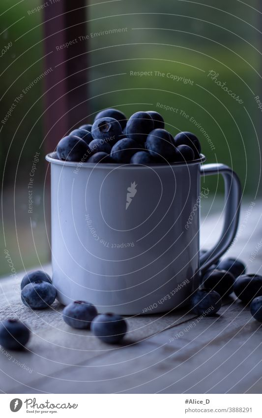 Blueberries in tin cup in window light antioxidant background Berries Blueberry Board Bowl Close-up copyspace Cup Dark Delicious Dessert Detox Diet Food Fresh