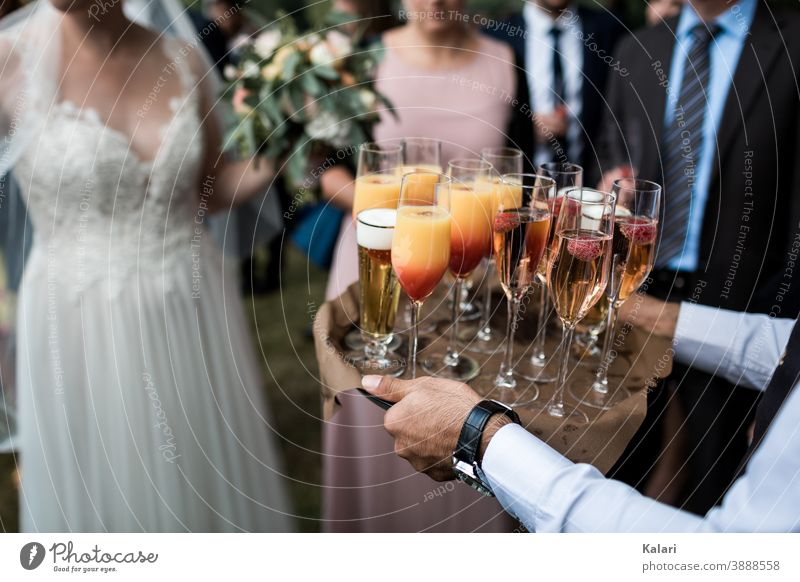 Waiter in shirt carries tray with aperitif at wedding, bride in background Tray Sparkling wine Champagne glass Alcoholic drinks Prosecco Shallow depth of field