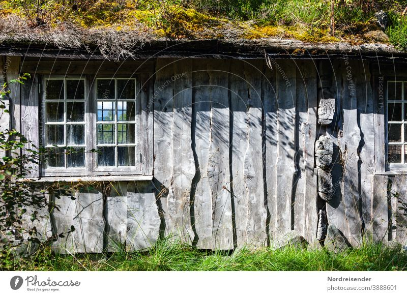 Cozy wooden house in the wilderness of Norway Contrast Deserted Day Light Shadow Exterior shot Colour photo Life Ecological Sustainability Wooden house