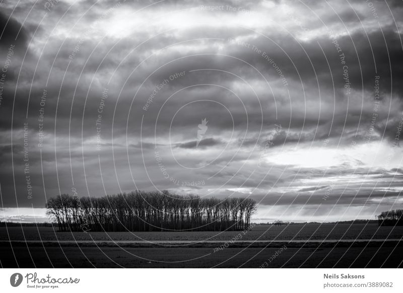 dramatic sky in black and white over the agricultural field Agriculture background balance beautiful blue calmness card cloud color countryside dark dawn day