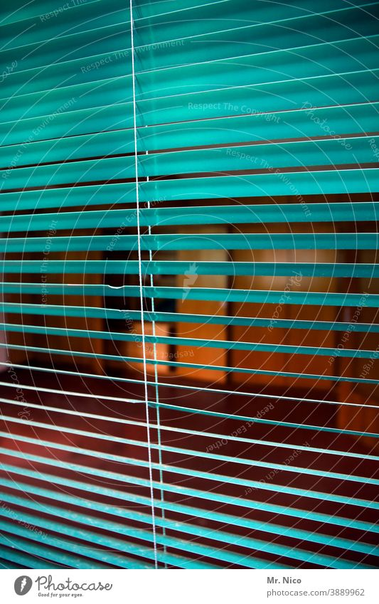 take a look Venetian blinds Roller blind Disk Slat blinds Living or residing stay at home Flat (apartment) Vista View from a window Safety Protection Curiosity
