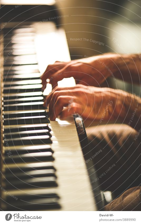 Practice makes perfect - man plays piano Play piano Piano Music hands exercise makes perfect Success Ambitious Disciplined discipline Pianist Musician talent