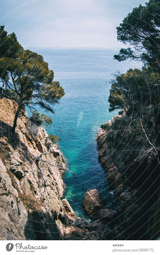 small cove with crystal clear water on the costa brava, catalonia, spain calella de palafrugell llafranc tamariu without people outdoor copy space color wide