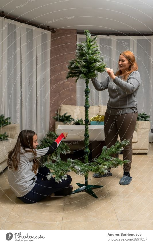 Mother and daughter assembling the Christmas tree in their living room decorated new year fun celebration family christmas tree man cheerful hipster children
