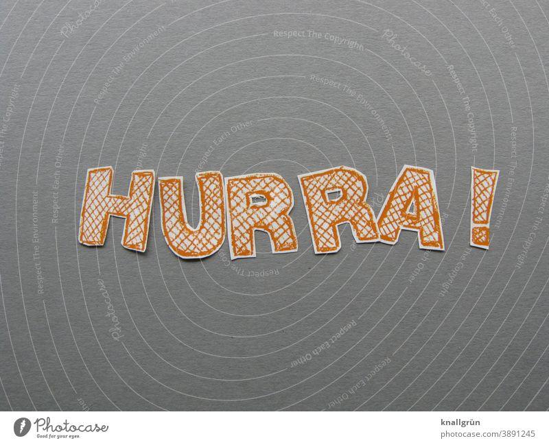 Hooray! hooray Elation Joy Enthusiasm Happiness Joie de vivre (Vitality) Happy Contentment Euphoria Moody Emotions Optimism Success Letters (alphabet) Word leap