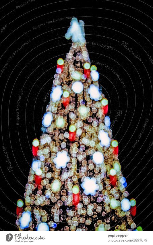 Christmas tree Christmas & Advent Christmas decoration fir tree Fir tree Christmassy Decoration Winter Festive Feasts & Celebrations Fairy lights Glitter Ball