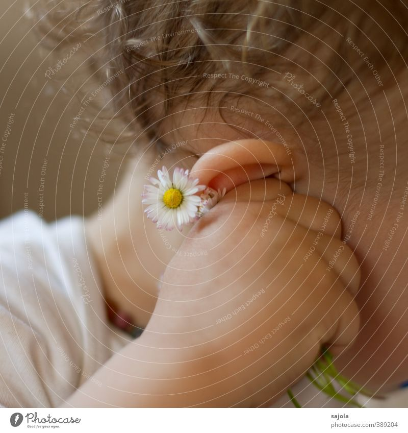 Do you hear what the daisies are whispering? Human being Child Toddler Ear Hand 1 1 - 3 years Plant Flower Daisy To hold on Listening Colour photo Interior shot