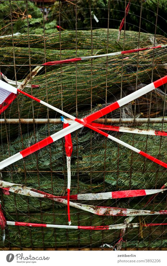Christmas tree sales christmas tree sales booth Advent advent season christmas time Preparation Tradition Poster pre-Christmas period Markets Fence Street Town