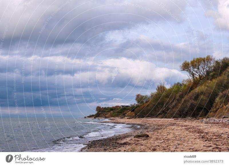Stones on the Baltic Sea coast near Meschendorf Ocean Mecklenburg-Western Pomerania Beach Baltic coast stones Rock Boulders Tree steep coast Sky Clouds Blue