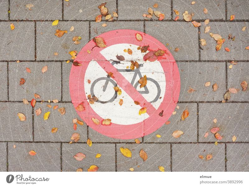 "Traffic sign ""Cycling prohibited"" with autumn leaves / prohibition sign / traffic regulation painted on the grey concrete paved road no cycling Prohibition sign"