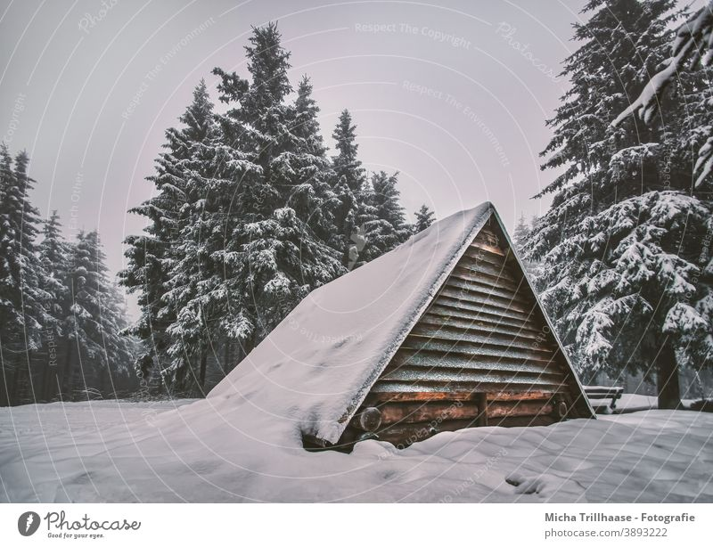 Snowy hut in the Thuringian Forest Thueringer Wald Schneekopf snowy Winter winter landscape Hut Wooden hut refuge trees Sky vacation Landscape Nature