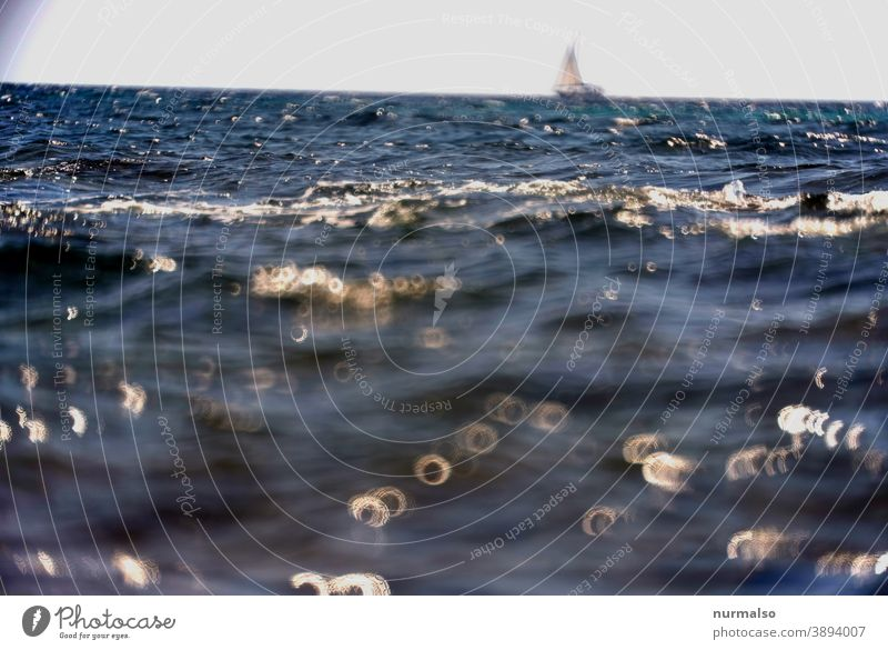Donuts with sailing wessel Ocean salt water Waves Mediterranean sea Sailboat Far-off places Horizon sparkle vacation Sailing be afloat go away Sardinia Nature