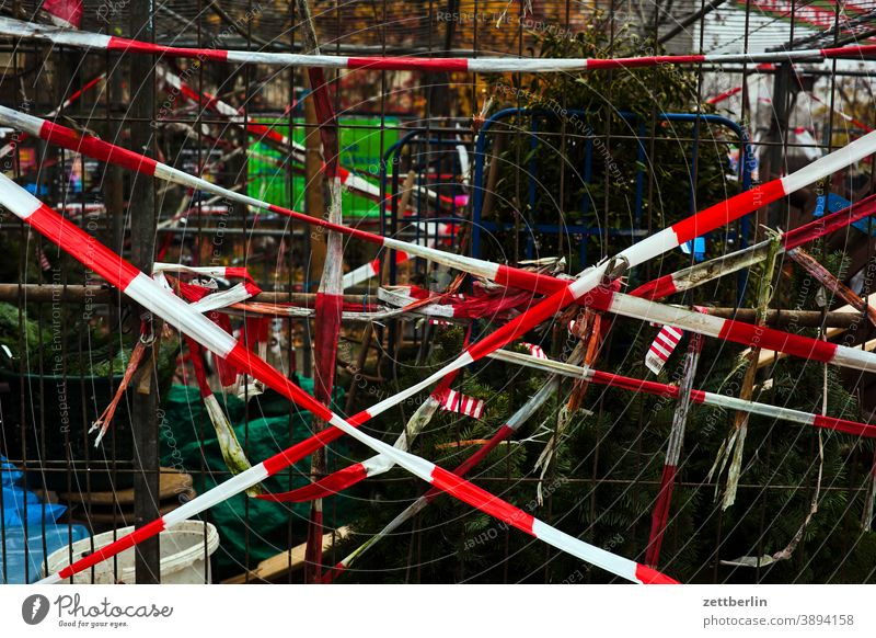Christmas trees behind flutterband Tree Coniferous trees christmas building Advent christmas time Net Packaging tied Packaged Transport tethered Belt