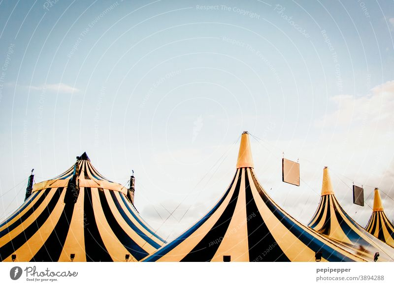 black yellow striped tents Tent door roofs Circus Circus tent Exterior shot Colour photo Deserted Event Fairs & Carnivals Day Entertainment Shows Sky