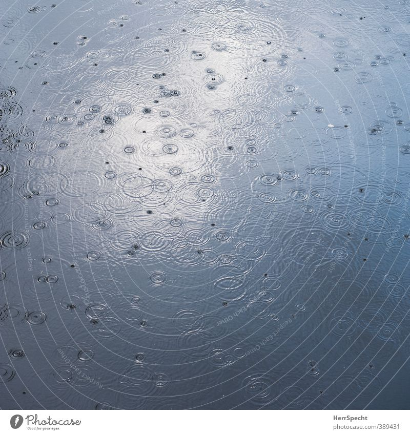 I think it's gonna rain today Nature Water Weather Bad weather Rain Pond Lake River Esthetic Cold Round Beautiful Gray Circle Drops of water Undulation Disperse